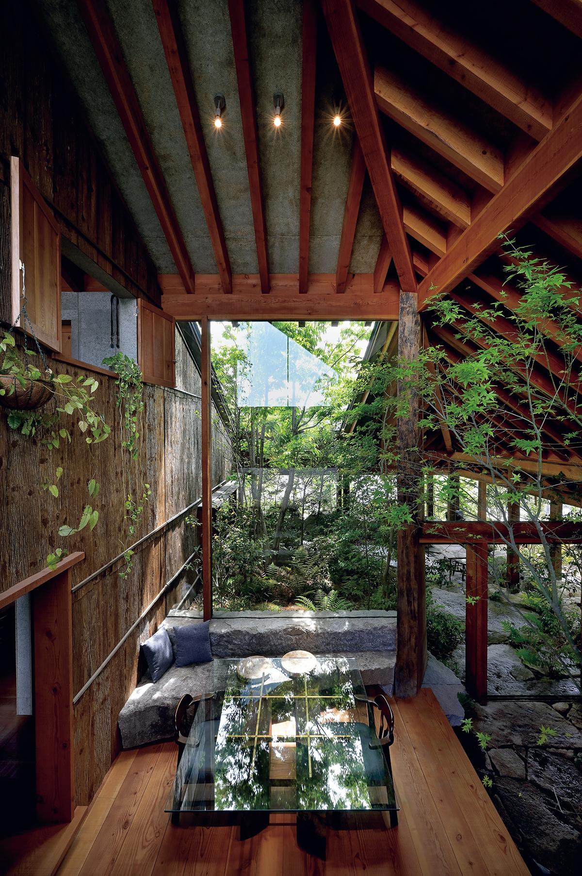 屋内なのに大きな木が植わっているうえ、壁面は杉の皮が貼られているので、屋内なのに屋外のような雰囲気のリビング・ダイニング。自然木に見える大黒柱は、神社仏閣を専門とする材木屋から仕入れた。その右手が玄関。さらに右がキッチン。
